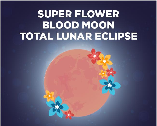 The Super Flower Blood Moon Eclipse