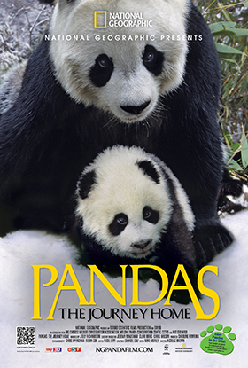 THE COSMOSPHERE TO OPEN 'PANDAS: THE JOURNEY HOME'